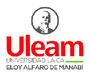 ULEAM logo